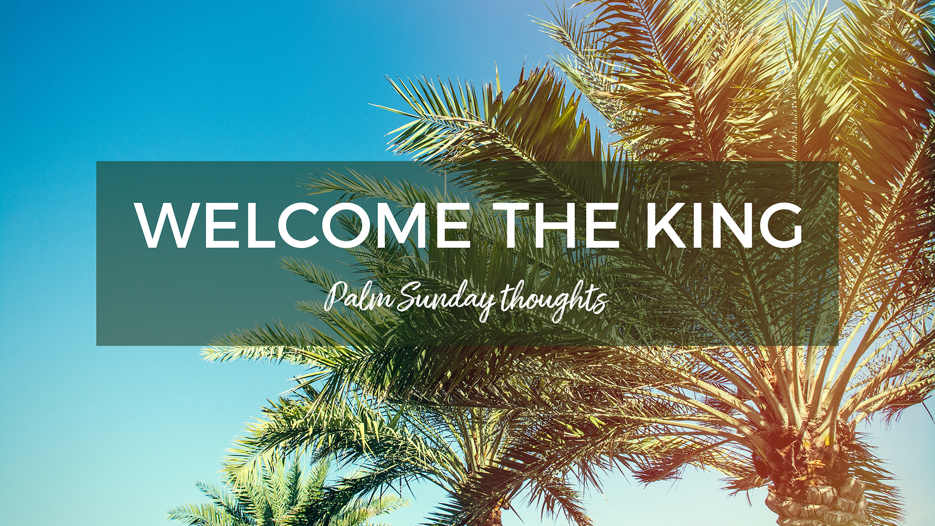 Welcome the King (Palm Sunday)